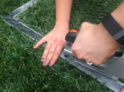 Use a staple gun to affix the chicken wire to the back of the frame