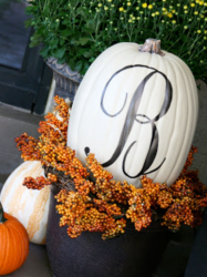 Pumpkin by